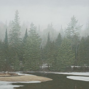 Misty morning in Algonquin Park