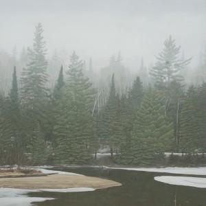 Misty morning in Algonquin Park